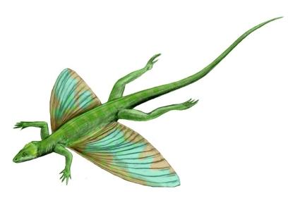 Динозавр Целурозаврав