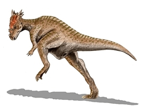Динозавр Стегоцерас