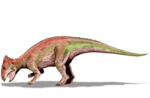 Динозавр Лептоцератопс