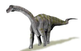 Динозавр Рапетозавр