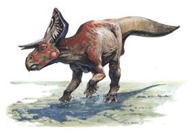 Динозавр Зуницератопс