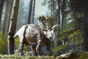 Динозавр Анкицератопс
