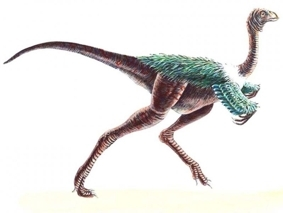 Динозавр Авимим