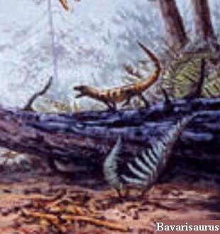 Динозавр Баваризавр