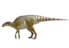 Динозавр Брахилофозавр
