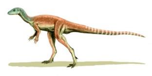 Динозавр Эокурсор