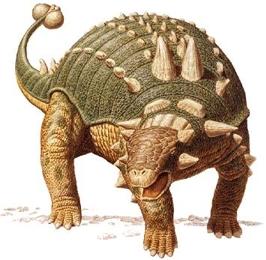 Динозавр Эвоплацефал