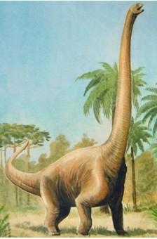 Динозавр Камаразавр