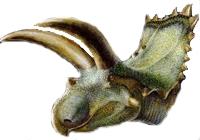 Динозавр Коауилацератопс