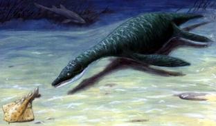 Динозавр Лептоклейд