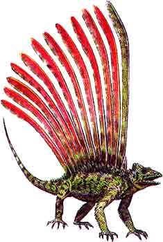 Динозавр Лонгисквама