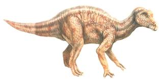 Динозавр Майязавр
