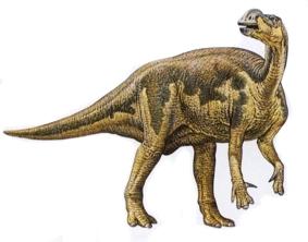 Динозавр Муттабурразавр