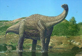 Динозавр Нигерзавр