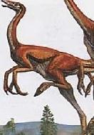 Динозавр Пелеканимим