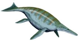 Динозавр Шонизавр