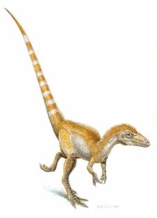 Динозавр Синозауроптерикс