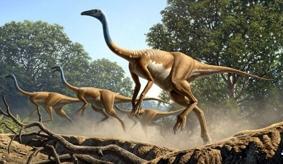 Динозавр Струтиомим