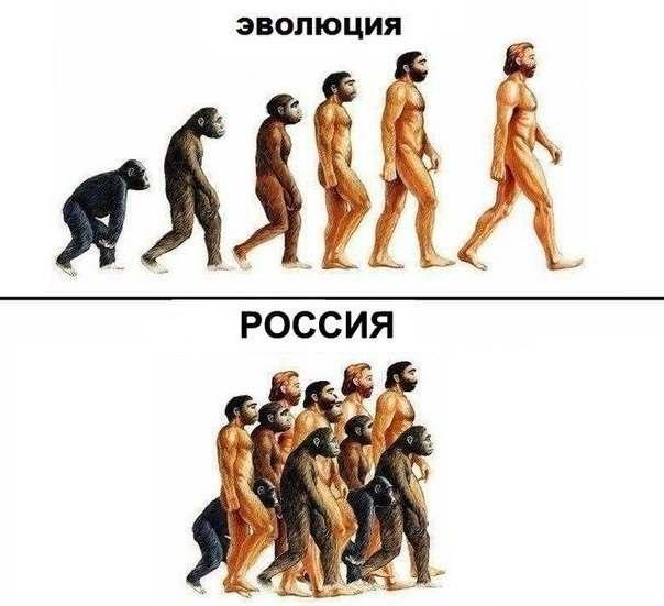 Эволюция в России