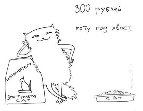 300 рублей коту под хвост!