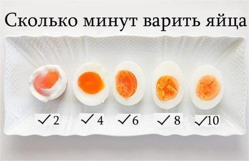Яйца - полезной