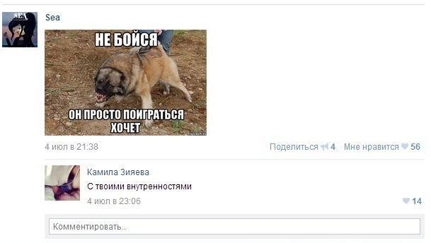 Добрый пёс