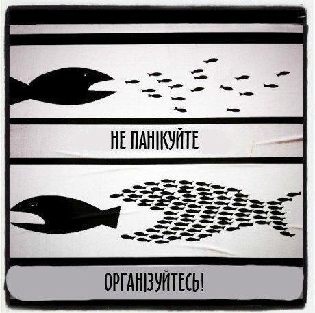 Главное не паниковать и организоваться
