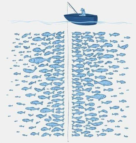 Закон рыбалки