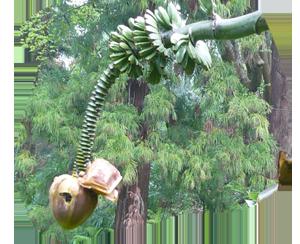 Фрукты - Японский банан