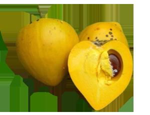 Фрукты - Канистель (Яичный фрукт)