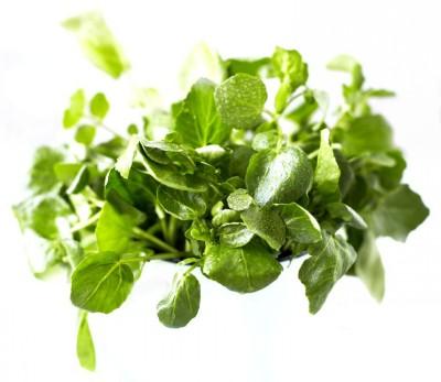 Овощи - Кресс-салат или водяной кресс