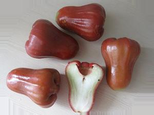 Фрукты - Розовое яблоко
