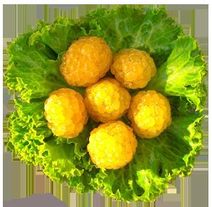 Фрукты - Жёлтая малина